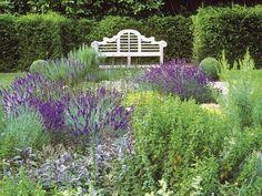 Country-Garden Calm : Lavender and purple sage decorate this formal garden with a white garden bench. Hardscape Design, Full Sun Garden, Cottage Garden Plants, Cottage Gardens, Garden Makeover, Drought Tolerant Plants, White Gardens, French Country Style, Chelsea Flower Show