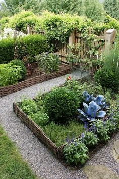 Love the edging for this Veggie Garden. Save your straight sticks and vines!