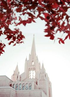 San Diego Temple. My dream is to get married here! I would feel like a true princess