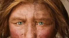 Scientist seeks 'Adventurous Woman' to give birth to cloned neanderthal