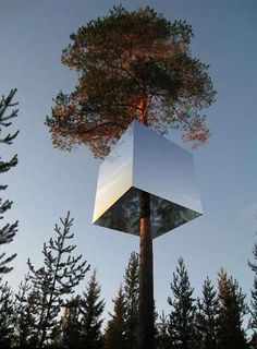 Mirror tree house hotel in Sweden | ScienceDump