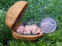 Miniature Fairy For Sale | Holiday Sale Miniature Fairy Baby in Walnut by TeensyWeensyBaby