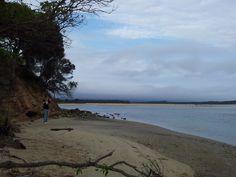 Tappa 3: da #Sydney a #Melbourne #ontheroad - Pebbly Beach to #Mallacoota