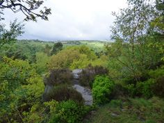 Perfect picnic spot in the National Trust estate of Hardcastle Crags in the valley below Elmet Farmhouse at Pecket Well near Hebden Bridge Hebden Bridge, Picnic Spot, Yorkshire Dales, National Trust, Walks, Countryside, Paradise, Country Roads, Farmhouse