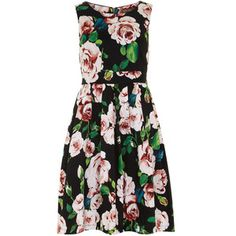 Jolie Moi Black Rose Fit and Flare Dress