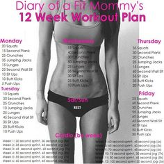 Diary Of A Fit Mommy's 12 Week Workout Plan