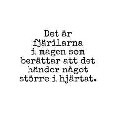 Swedish - rough translation: It's the butterflies in the stomach telling that happiness is happening bigger in the heart. Some Quotes, Words Quotes, Sayings, Swedish Quotes, Qoutes About Love, Different Quotes, Write It Down, Word Up, Some Words