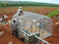 Ringo's Permaculture Adventures: Building a ferro cement structure,Vietnam.2006