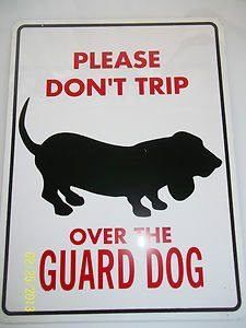please dont trip over the guard dog #bostonterrier