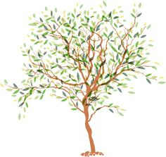 Fresh painted trees design vector graphics