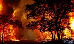 احتدام حرائق غابات في جنوب غرب الولايات…: احتدمت عدة حرائق غابات مدمرة عبر جنوب غرب الولايات المتحدة أمس السبت بعد تدمير عشرات المنازل…