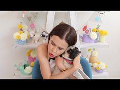 ¡HAZ PREMIOS PARA TUS PERRITOS! ♥ - Yuya - YouTube