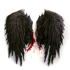 """""""If these wings could fly For the rest of our lives"""""""