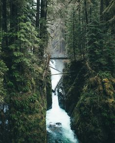 Sol Duc Falls, Olympic National Park by Dylan Furst - Photo 147109869 - 500px