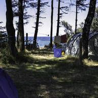 Campingplatz Rostock Warnemünde Darss Camping am Strand