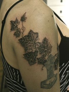 Hedera Helix combined with older tattoo.