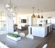 Kitchen Lighting Remodel modern coastal kitchen - Today I'm sharing a Succulent Plant Guide to help you add beautiful texture and a fresh pop of green to your styled spaces. Home Kitchens, Kitchen Remodel, Kitchen Design, House Design, Kitchen Dining Room, Interior, Home Decor Kitchen, Home Decor, Coastal Kitchen