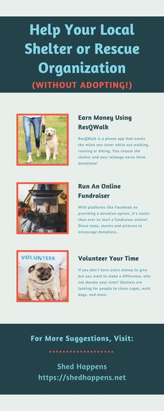 Are you feeling the calling to help local rescue dogs and rescue cats, but aren't sure where to start? There are many opportunities to assist in animal rescue fundraising and animal shelter donation. This post discusses 14 different ways that you can help your local shelter or rescue organization without adoption. #animalrescueideas #animalrescuefundraising #animalrescue #animalshelterdonationideas #animalshelterfundraiser Rescue Cats, Animal Rescue, Animal Shelter Donations, The Calling, Dog Safety, Like Facebook, Animal Memes, Cat Life, Pet Care