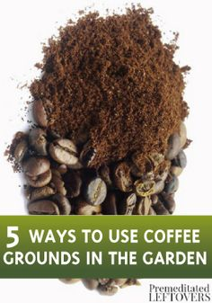 Discover how to recycle your coffee grounds and use them in your garden with these 5 tips!