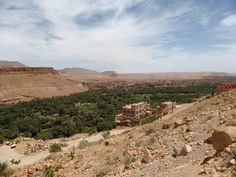 High Atlas - valley with date palms
