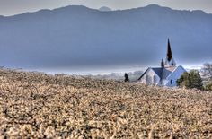 Misty Riebeeck Kasteel Modern Country, Nature Reserve, Beautiful World, West Coast, South Africa, Cape, Lens, Bucket, African