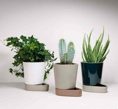 The Sip, is a self-watering Terrastone Planter Designed in Norway by Ann Kristin Einarsen Self Watering Containers, Self Watering Planter, Indoor Plant Pots, Potted Plants, Contemporary Planters, Contemporary Furniture, Modern Contemporary, Robin Day, Plantar