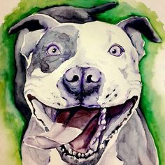 Instagram-Beitrag von Sonja Obermoser • Jan 14, 2018 um 11:42 UTC Pitbulls, Dogs, Instagram Posts, Animals, Art, Art Background, Pit Bulls, Animaux, Pitt Bulls
