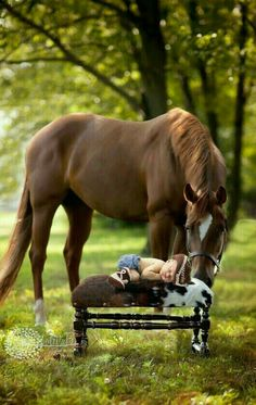 Baby pictures newborn country horses ideas for 2019 Cute Horses, Pretty Horses, Horse Love, Beautiful Horses, Animals Beautiful, Horse Pictures, Animal Pictures, Cute Pictures, Animals And Pets