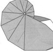 origami chambered nautilus shell