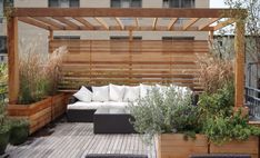 Pergola.  48 tiffany place, patio, roof deck, brooklyn