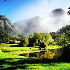 """I can't wait to explore the grounds of the Kirstenbosh botanical garden.""  Cape Town. Win your dream city break with i-escape & Coggles #Coggles #iescape #competition"