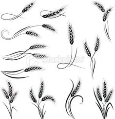 ... | Ink | Pinterest | Wheat Tattoo Tattoos and body art and Ornaments
