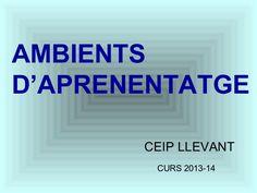 AMBIENTS D'APRENENTATGE CEIP LLEVANT CURS 2013-14