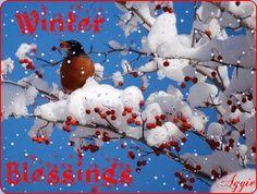 dreamies.de (lm3twh6c4h0.gif) / winter blessings