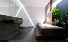 Banheiro Negro e Vegetação