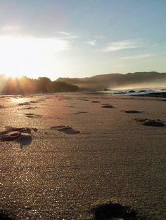 footprints. Costa Rica
