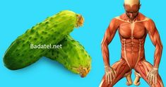 Since ancient times, cucumbers have been used in India in meals as well as in traditional medicine. This is because, in a warm country like India, cucumbers provide the necessary hydration and … Vitamins In Cucumbers, Nutrients In Cucumber, Cucumber Health Benefits, Negative Effects Of Stress, Low Calorie Fruits, Yoga Position, Cucumber Canning, Double Menton, Vitamin C And Zinc