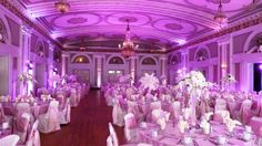 Pink wedding reception uplighting