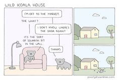 Koalas in the house