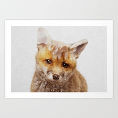 Buy Fox Cub Art Print by Andreas Lie. Worldwide shipping available at Society6.com. Just one of millions of high quality products available.