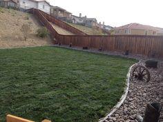 Western backyard