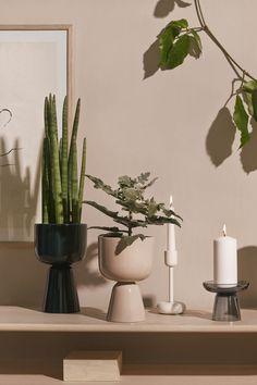 by Matti Klenell for Iittala Nordic Design, Scandinavian Design, Curve Design, Potted Plants, Plant Pots, Colour Schemes, Soft Colors, Interior Inspiration, House Plants