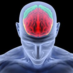 Meditation Strengthens The Brain, UCLA Researchers Say