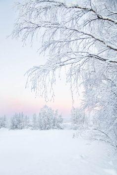 Kaamoksen värejä Muoniossa, Tunturi-Lapissa Beautiful Nature Pictures, Beautiful Nature Wallpaper, Beautiful Landscapes, Winter Scenery, Winter Theme, Winter Wonderland Background, White Aesthetic Photography, Winter Wallpaper, Winter Magic
