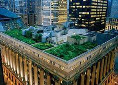 7 Secret Gardens in Chicago - PureWow