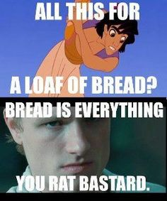This is probably the funniest hunger games meme yet