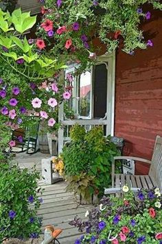 Country front porch....Old fashioned flowers. My kind of USA.