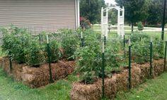 Straw Bale Gardening: Start to Finish  ► www.growtest.org/2013/01/12/straw-bale-gardening-start-to-finish/