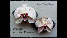 Orchid with Pan Pastels