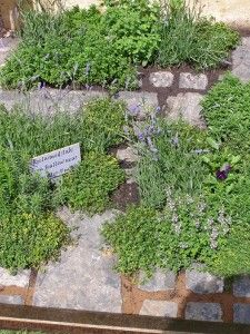 A great way to use odd paving slabs: it's 'My Very Local Veg Garden' again: Hannah used odds and ends of paving slabs laid in a rough rectangle with planting pockets between to make an exquisite mini herb garden